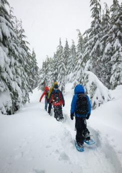 Schneeschuhwandern Steiermark